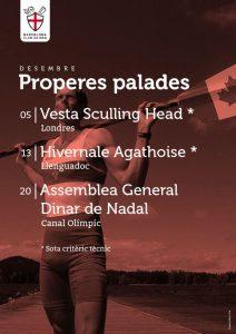 Properes Palades 12-2015